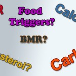 bmi bmr carb calories?